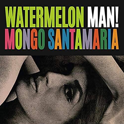 Watermelon Man (LP)