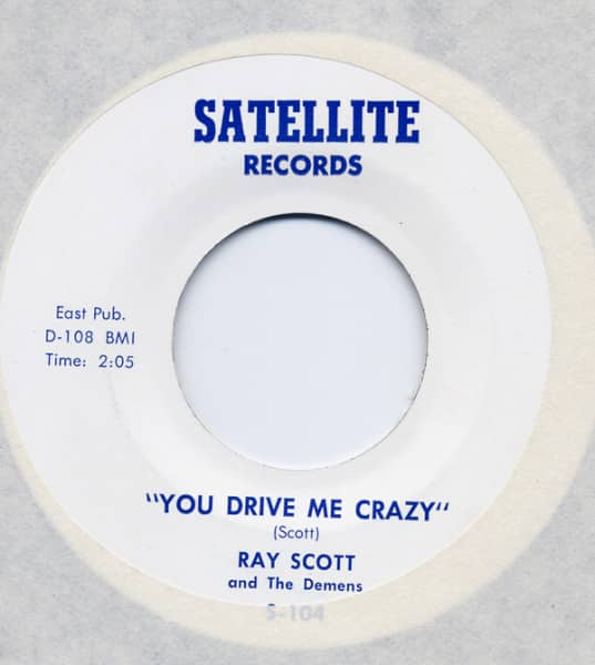 You Drive Me Crazy - Say Anything...7inch, 45rpm