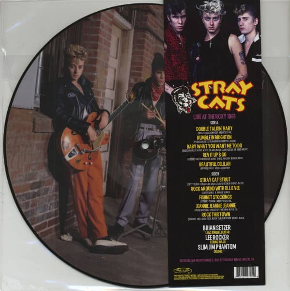 Live At The Roxy 1981 (LP, Picture Disc)