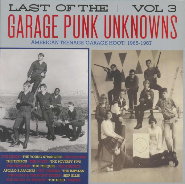 Last Of The Garage Punk Unknowns, Vol.3 (LP)