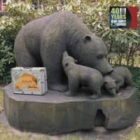 40 Years Bear Family Records (3-CD - 1-DVD)