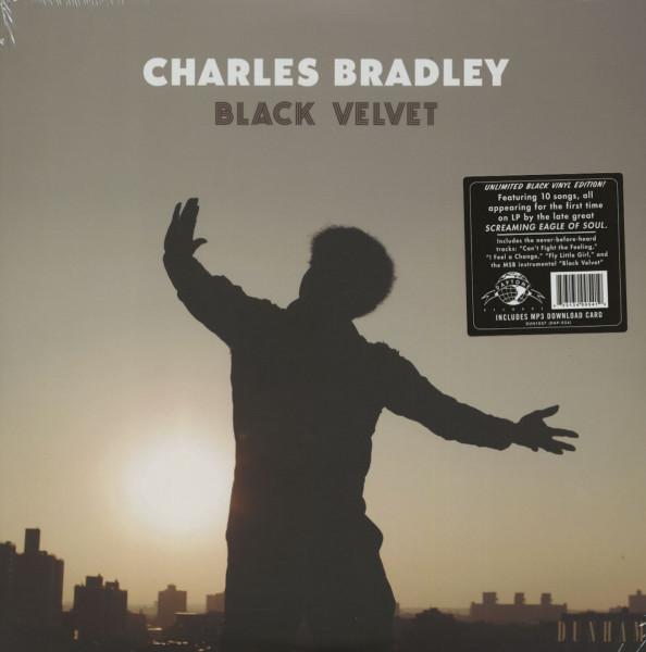 Black Velvet (LP)