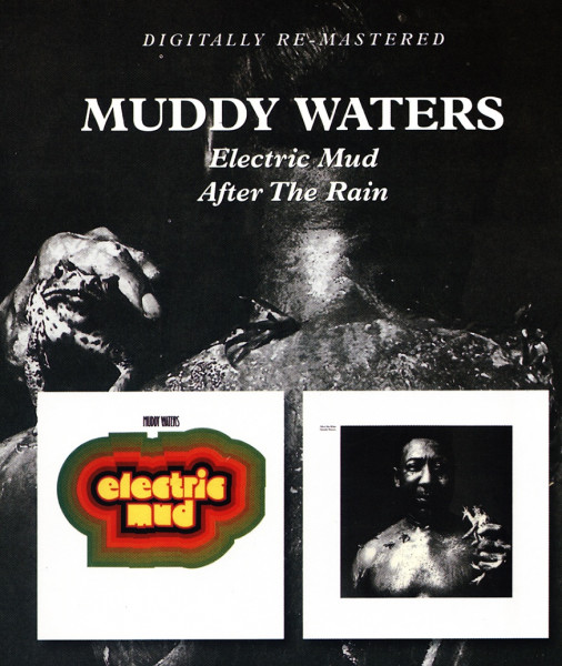 Electric Mud - After The Rain