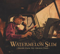 Watermelon Slim CD: Church Of The Blues (CD) - Bear Family