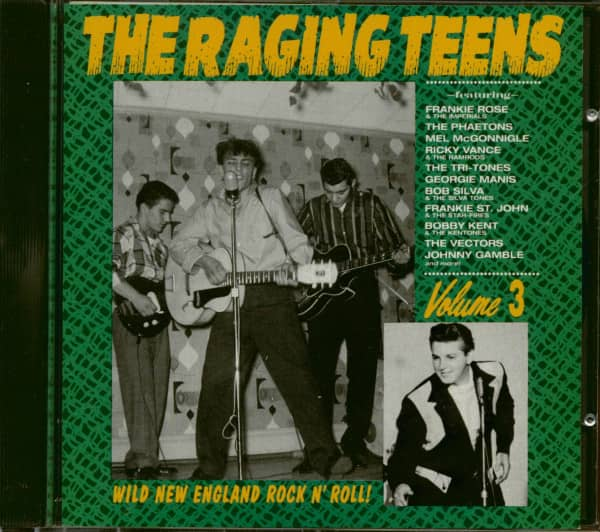 The Raging Teens - Wild New England Rock'n'Roll Vol.3 (CD)