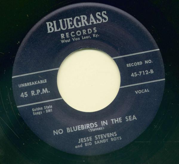 Mama, Mama - No Bluebirds In The Sea (7inch, 45rpm)