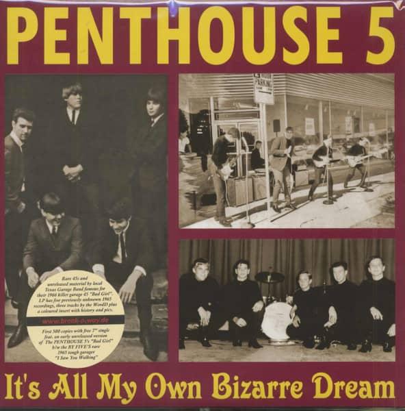 It's All My Own Bizarre Dream (LP, 180g Vinyl)