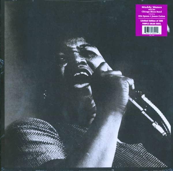 The Queen At Monterey (LP, Ltd, Purple Vnyl)