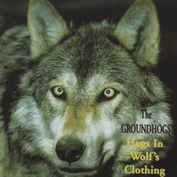 Hog's In Wolf's Clothing