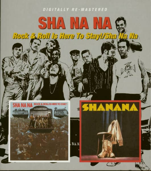 Rock & Roll Is Here To Stay - Sha Na Na (CD)