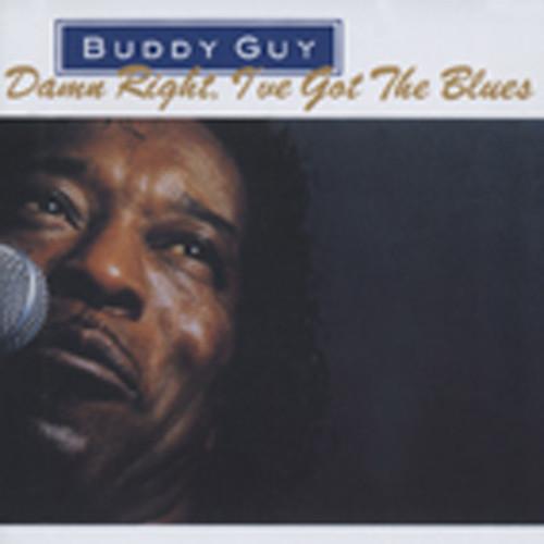 Damn Right, I 've Got The Blues