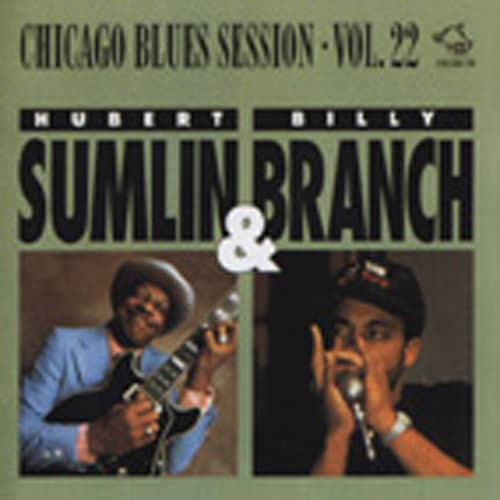 Chicago Blues Session Vol.22
